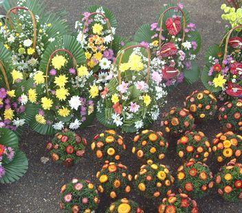Dscf0247_flower