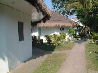 dscf7740_coconut_grove