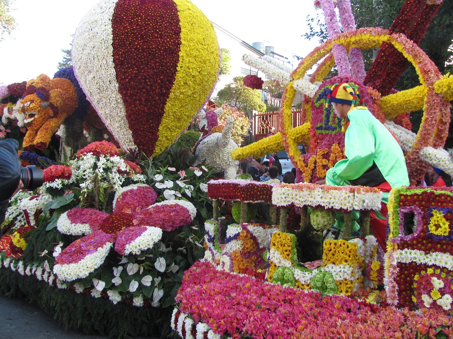 Flower_festial_2015_and_sakura_terr