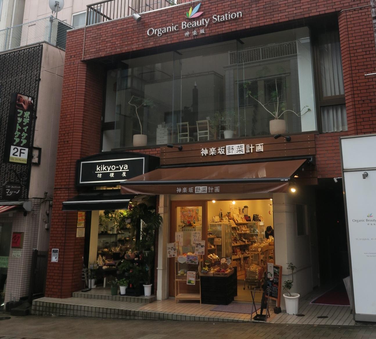 Oriental_piano_035